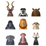 Icons of african animals Royalty Free Stock Photo