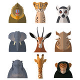 Icons of african animals. Vector image of a set with flat icons of african animals Royalty Free Stock Photos