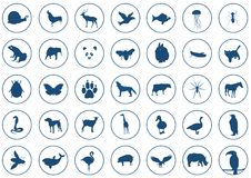 Icons animals stock illustration