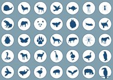Icons animals Stock Photos