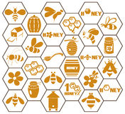 Icons Bee And Honey In Comb Royalty Free Stock Photos