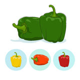 Icons bell pepper,sweet pepper or capsicum Stock Photography