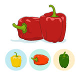 Icons bell pepper,sweet pepper or capsicum Stock Photo