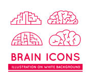 Icons of brains in different styles. Royalty Free Stock Images