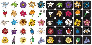 Icons colored flowers Royalty Free Stock Photography