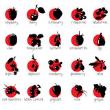 Icons with the contours of the berries. Under each icon name berries. Royalty Free Stock Image