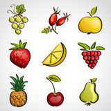 Icons - different fruits and berries Stock Photography