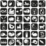 Icons farm animals and products. Image of black icons of farm animals and natural products Royalty Free Stock Photography