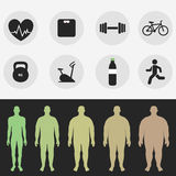 Icons, the figure of a man, sport, fitness, diet. Vector. Set icons, the figure of a man, sport, fitness, diet. Vector Royalty Free Stock Image