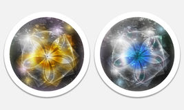 Icons with flower Stock Photos
