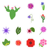 Icons flower. Icon set flower. Icon cactus, Stock Photo