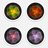 Icons with flower Stock Images