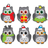 Icons in the form of colorful owls in winter hats Stock Images