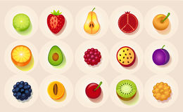 Icons of fruit in a circle Stock Image