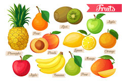 Icons of fruit Royalty Free Stock Image