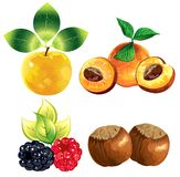 Icons fruits Royalty Free Stock Photo