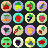 Icons of fruits and berries in a set on a dark background. Icons of different fruits and berries, placed in colored circles with a shadow, collected in a set on Stock Images