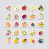 icons of fruits with shadow.vector illustration Stock Image