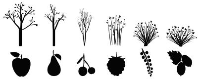 Icons of garden trees, shrubs and fruit Royalty Free Stock Image