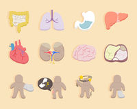 Icons for health and medical. Flat design - icons for health and medical royalty free illustration