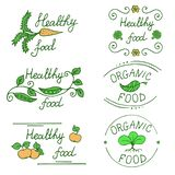 Icons for healthy food and organic products drawn by hand. Set of labels for the food market vector illustration