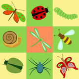 Icons with insects. Image of various crawling and flying insects Stock Illustration