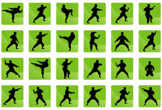 Icons of karate on the green. Stock Photography