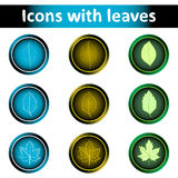 Icons with leaves Stock Photos