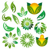 Icons of leaves. Vector illustration royalty free stock photography