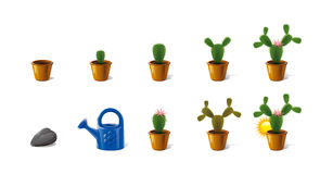 Icons made ​​of growth Cactus Stock Image