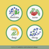 Icons of medicinal plants 1 Stock Image