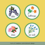 Icons of medicinal plants 2 Royalty Free Stock Image