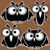 Icons owls isolated on brown Royalty Free Stock Images