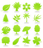 Icons of plant. S of green colour. A  illustration Royalty Free Stock Photography