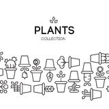 Icons of pot plants garden. Vector illustration Stock Photography