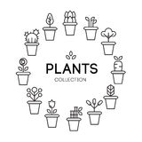 Icons of pot plants garden. Vector illustration Stock Photo