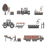 Icons processing of agricultural production. On the image it is presented icons processing of agricultural production Stock Photos
