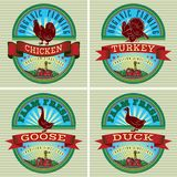 Icons rooster, turkey, goose, duck Stock Images