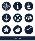 Icons with sea elements. Vector icons with sea elements: lighthouses, ships, anchors Stock Images