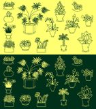 Icons set of indoor plants Royalty Free Stock Images
