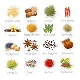 Icons Set Of Spices Royalty Free Stock Photo