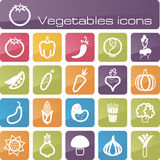 Icons set vegetables Royalty Free Stock Image