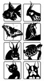 Icons with silhouettes of animals. 7 icons colors with silhouettes of animals stock illustration