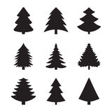 Icons spruce. Christmas fir-tree of an icon Royalty Free Stock Photo