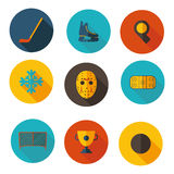 Icons on the topic of hockey Royalty Free Stock Images