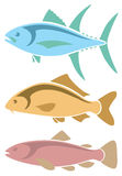 Icons tuna, carp , trout Royalty Free Stock Photos