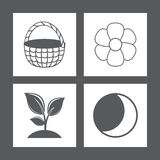 Icons. Vector illustration. Star sprout flower basket. Vector illustration Stock Image