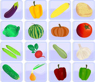 Icons with vegetables Royalty Free Stock Image