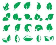 Iconss verdes da folha isolados em um fundo branco Imagens de Stock