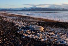 icy alaskabo strand arkivbilder